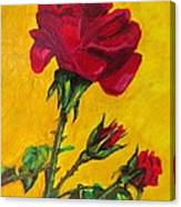 Red And Small Canvas Print