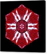 Red And White Amaryllis Iv Flower Mandala Canvas Print