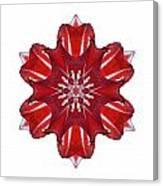 Red And White Amaryllis Vii Flower Mandala White Canvas Print