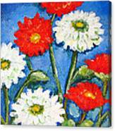 Red And White Flowers With A Blue Sky Canvas Print