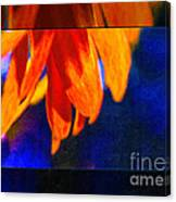 Red And Yellow Bloom In A Blue Paradise Canvas Print