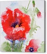 Red Anemones Canvas Print