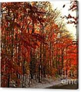 Red Autumn Road In Snow Canvas Print