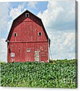 Red Barn And New Corn Canvas Print