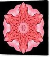 Red Begonia II Flower Mandala Canvas Print