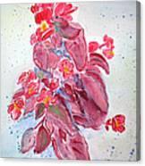 Red Begonias Canvas Print