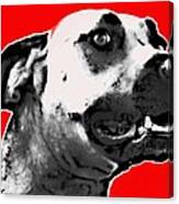 Red Blooded Scooby Dog Canvas Print