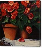 Red Bloom In Terracotta Canvas Print
