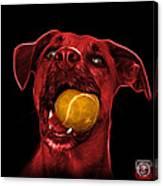 Red Boxer Mix Dog Art - 8173 - Bb Canvas Print