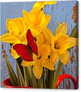 Red Butterfly On Daffodils Canvas Print