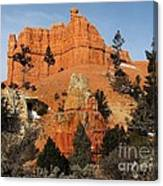 Red Canyon - Scenic Byway 12 Canvas Print