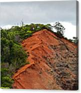 Red Cliff At Waimea Canvas Print