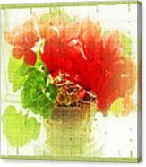 Red Cyclamen On Windowsill Canvas Print
