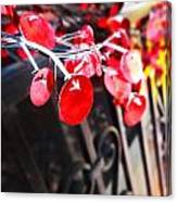 Red Decorations Canvas Print