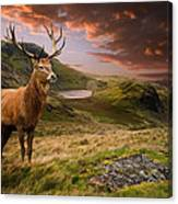 Red Deer Stag And Mopuntains Canvas Print