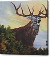 Red Deer - Stag Canvas Print