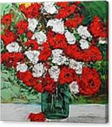 Red Explosion Canvas Print