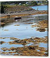 Red Flat At Low Tide Canvas Print