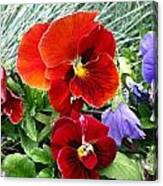 Red Flower In Grass Canvas Print