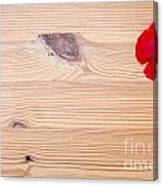 Red Flower On Wood  Canvas Print