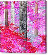 Red Forest Canvas Print