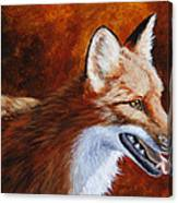 Red Fox - A Warm Day Canvas Print
