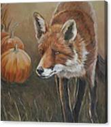 Red Fox With Pumpkins Canvas Print