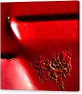 Red Gash Canvas Print