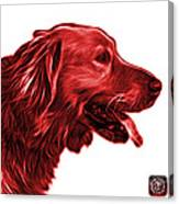 Red Golden Retriever - 4047 Fs Canvas Print
