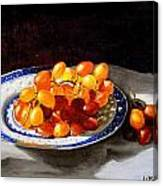 Red Grapes On Chinese Dsh Canvas Print