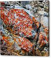 Red Growth Rock Canvas Print