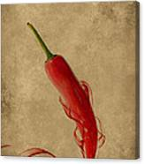 Red Hot Chili Pepper Poster  Canvas Print