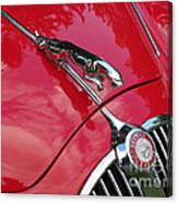 Red Jaguar 3.8 Canvas Print