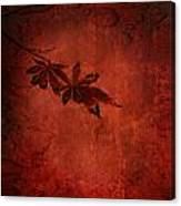 Red Japanese Maple On Red Canvas Print