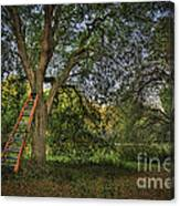 Red Ladder And Oak Canvas Print