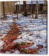 Red Leaves On Snow - Cabin In The Woods Canvas Print