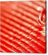 Red Lined Canvas Print