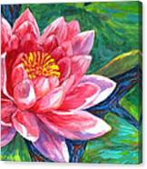 Red Lotus Flower Canvas Print