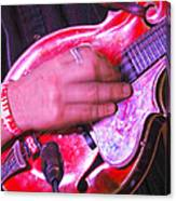 Red Mandolin Canvas Print