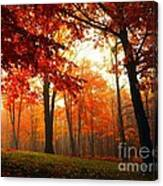 Red Maple Forest Canvas Print