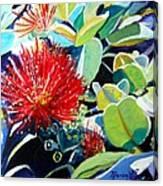 Red Ohia Lehua Flower Canvas Print