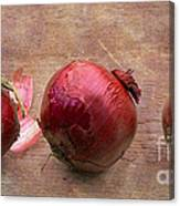 Red Onions On Barnboard Canvas Print