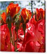 Red Orange Roses Art Prints Floral Photography Canvas Print