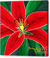 Red Oriental Daylily Canvas Print