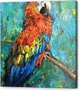 Red Parot Canvas Print