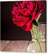 Red Peony Flower Vase Canvas Print