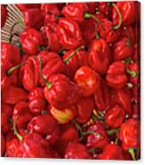 Red Peppers At The Saturday Market, San Canvas Print