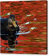 Red Pond Canvas Print