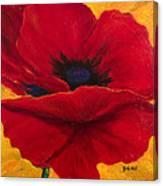 Red Poppi II Canvas Print