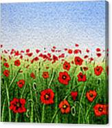Red Poppies Green Field And A Blue Blue Sky Canvas Print